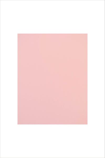 AlteNew - Blush Cardstock (5 sheets/set)