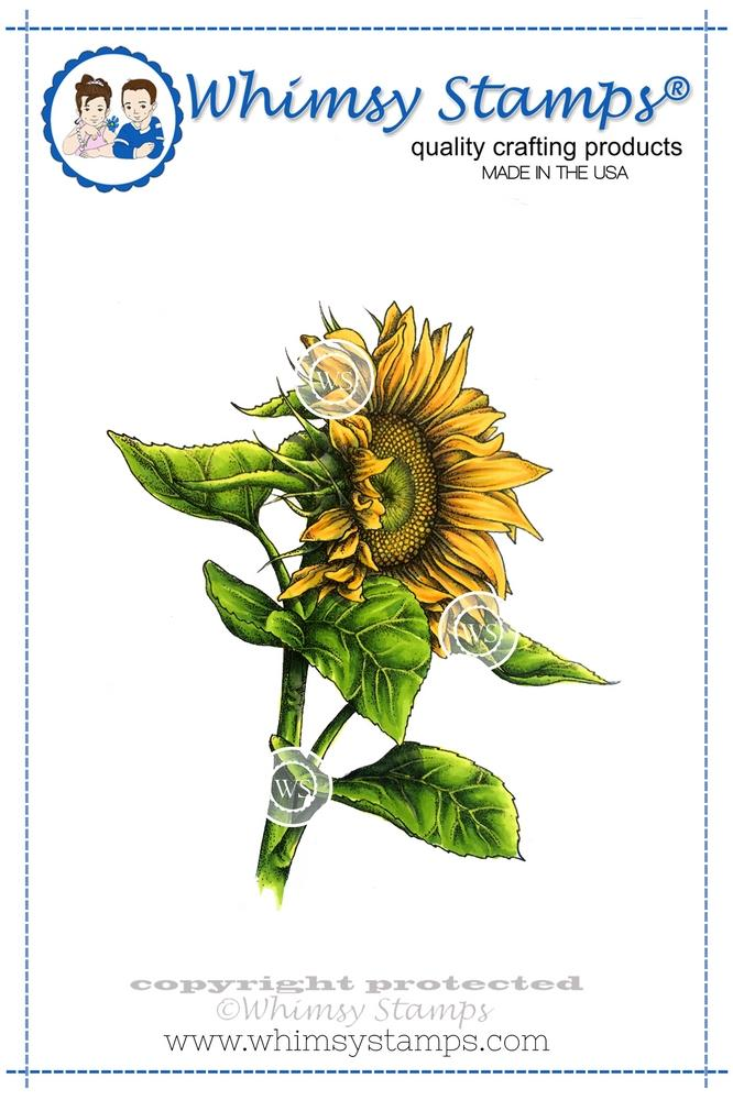*NEW* - Whimsy Stamps - Sunflower