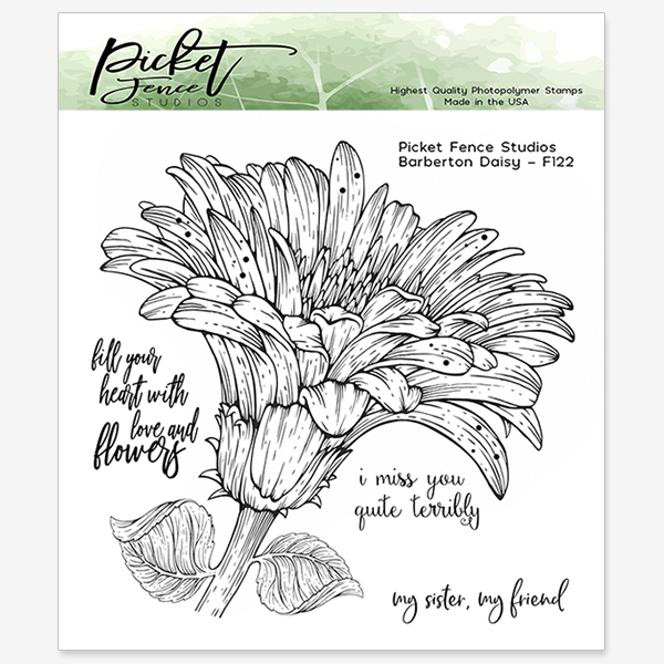 *NEW* - Picket Fence Studios - Barberton Daisy